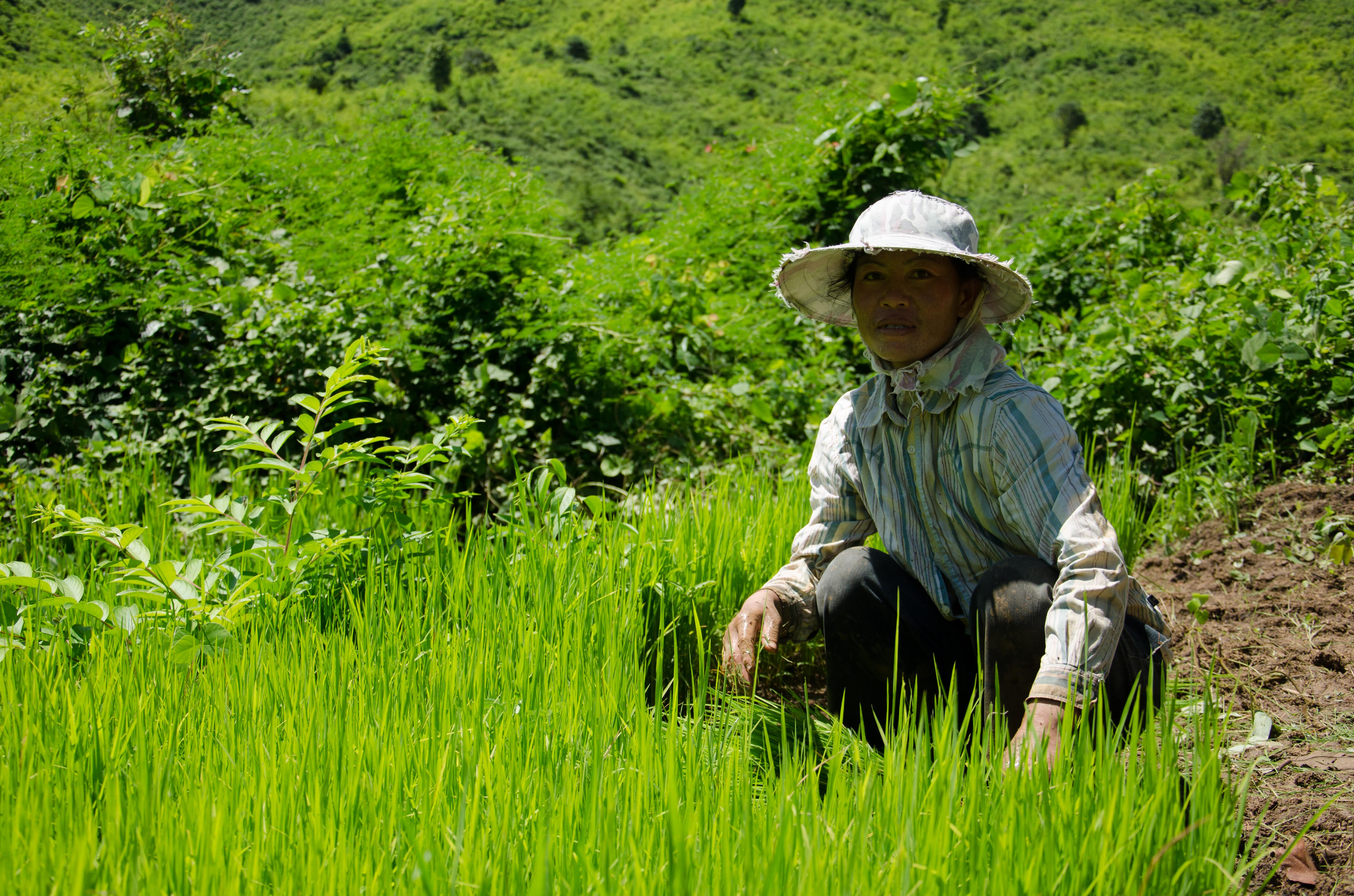 can subsistence farmers turn into commercial farmers practical action