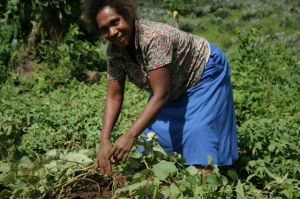 A woman in Koregu, Isabel Province, farms for yams, one of the staple foods for Solomon Islanders.